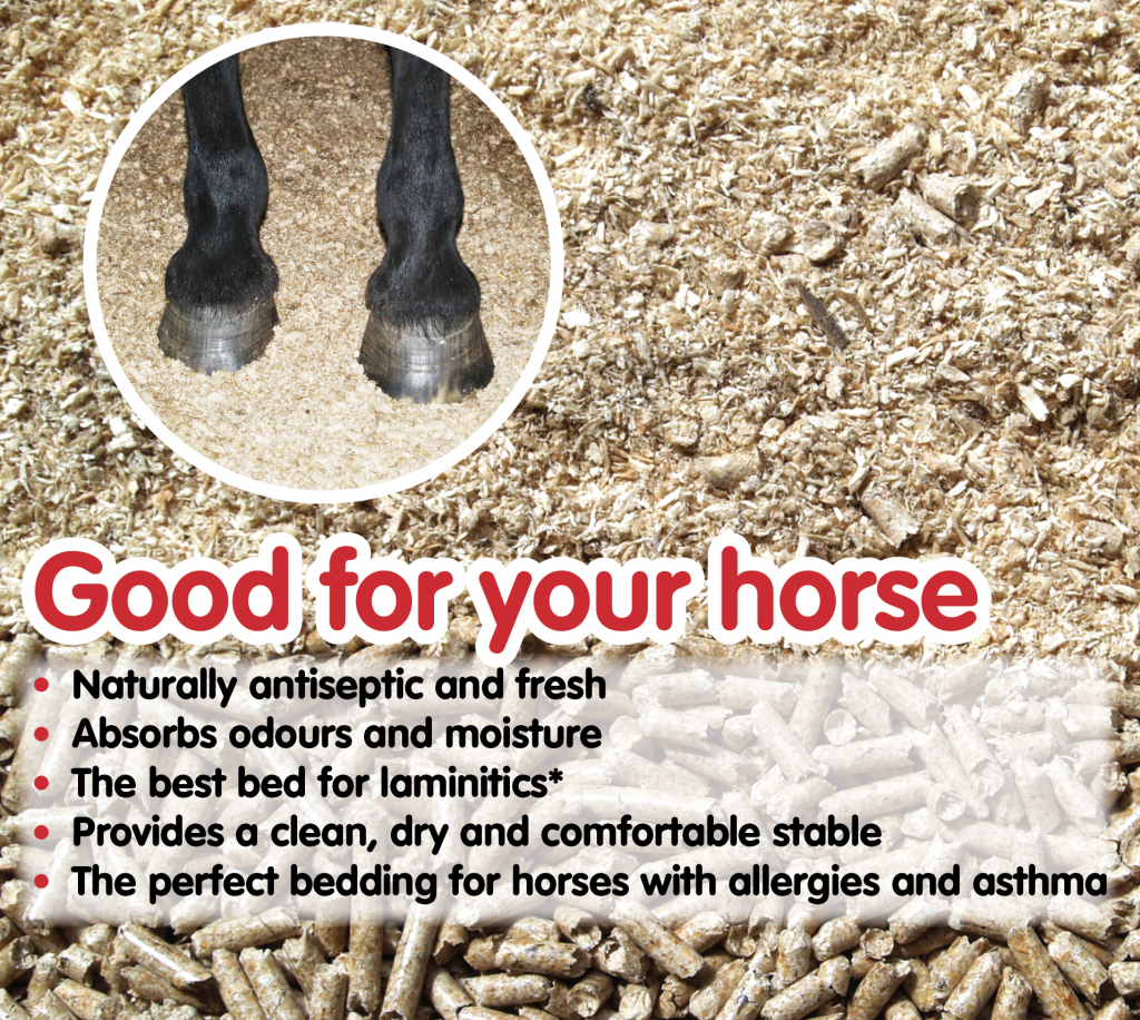 Good for your horse's health